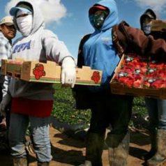 Migración, proceso lamentable, pero influye dinamismo a Oaxaca