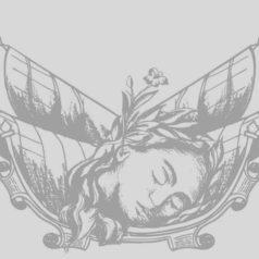 El escudo de Oaxaca, una historia de amor