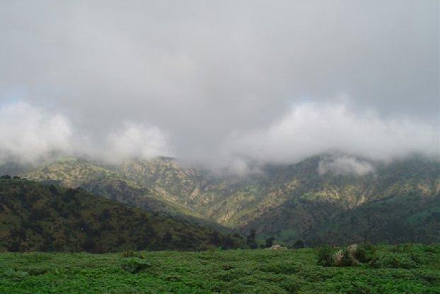 Vegetación de Oaxaca puede conocerse desde el espacio